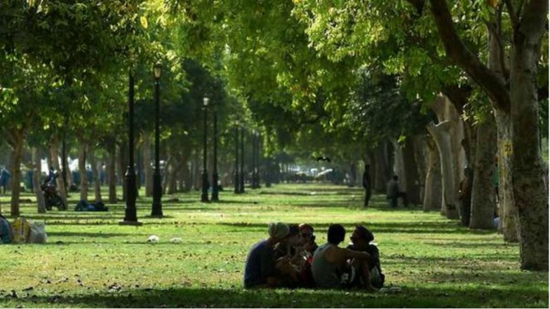 Delhi to Be Guarded by 31 Lakh Tree-Wall for Protection From Frequent Dust Storms and Pollution From Neighbouring States