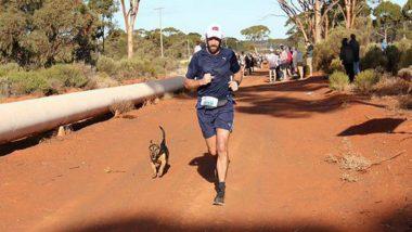 Dog Called Stormy Finishes Australia Half-marathon Alongside Human Competitors, Wins Medal
