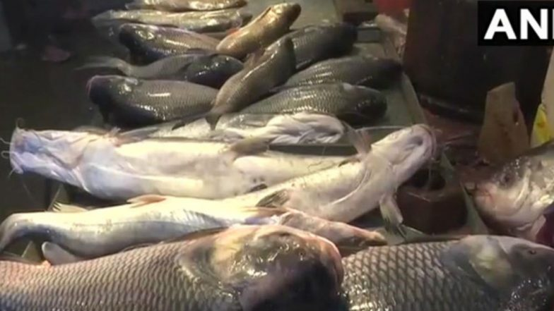 Cancer-Causing Chemical Formalin Found in Imported Fish in Assam Market