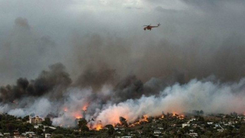 60 Killed 700 Rescued as Deadly Forest Fires Rage in Greece