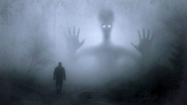 Russian Time-Traveller Claims He Met Aliens and Spoke to Them About the Earth, See Video to Know What Extraterrestrials Think of Us!