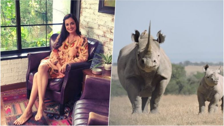 Dia Mirza Gets a Baby Rhino Named After Her, Asks Fans to Support Wildlife Conservation