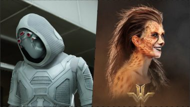 Ghost in 'Ant-Man and the Wasp' to Cheetah in 'Wonder Woman 1984,' Meet Female Villains From Marvel and DC Films