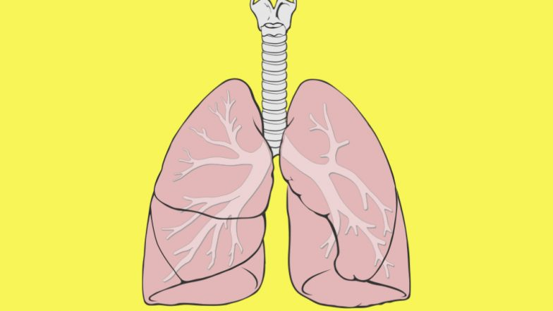 Stem Cell Therapy Can Treat COPD Caused By Smoke