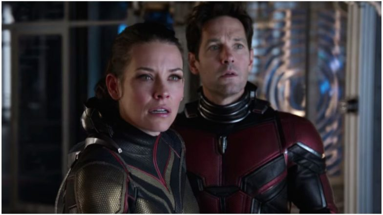 Is Ant-Man 3 Happening? Paul Rudd Doesn't Know But Twitterati Tell Marvel Why They Need Another Film in the Franchise