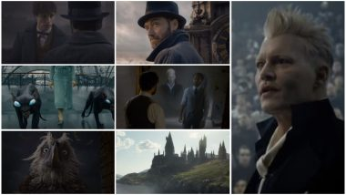 Fantastic Beasts - The Crimes of Grindelwald Comic-Con Trailer: Jude Law's Dumbledore Seeks Eddie Redmayne's Newt Scamander's Help to Challenge Johnny Depp's Grindelwald