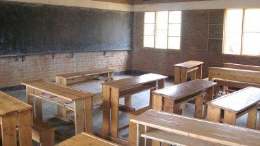 Delhi Govt School Guest Teacher Attempts Self-Immolation Accusing Principal of Harassment
