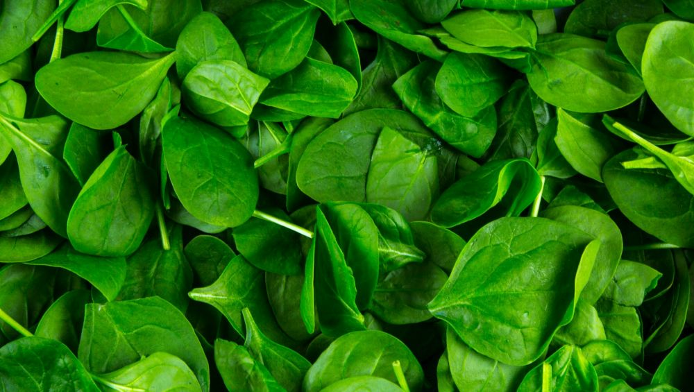 Iron Deficiency Day 2019: Foods to Increase Iron Absorption in the Body and Prevent Aneamia