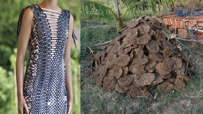 Cow Dung to Clothes:  Here's How a Dutch Designer's Unique Idea Helps the Environment in the Netherlands