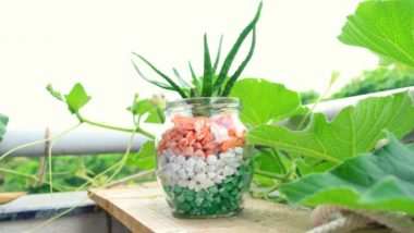 Independence Day 2018: Five DIY Decoration Ideas to Brighten Up The August 15 Celebrations (Watch Videos)