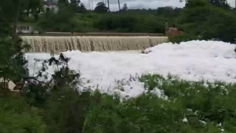 Tamil Nadu Water Pollution: Noyyal River in Coimbatore Turns Frothy, See Pictures