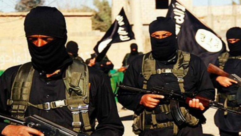 Egypt: Security Forces Kill 12 ISIS in a Shootout in Sinai Peninsula
