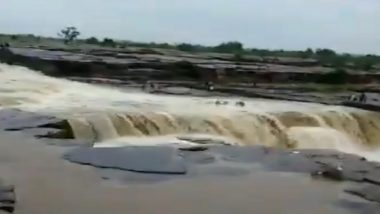 Madhya Pradesh: 11 People Drown in Sultangarh Waterfall in Shivpuri District; Rescue Operations Underway