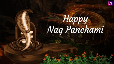 Nag Panchami Images & HD Wallpapers in Marathi for Free Download Online: Wish Happy Naga Panchami With Beautiful GIF Greetings & WhatsApp Sticker Messages