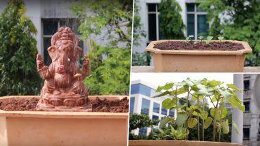 Eco-Friendly Ganesha 2018: This Ganpati Idol Grows Into a Tree, Watch Video