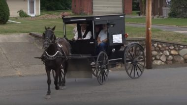 'Amish Uber' Launched in Michigan! Man Offers Uber-Like Experience With His Horse & Buggy: Watch Video