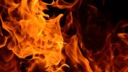 Chhattisgarh Hospital Fire: 5 Dead After Fire Breaks Out at Hospital in Raipur, Patients Shifted to Other Hospitals