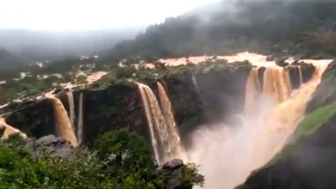 Jog Falls in Karnataka Are Flowing in Full Glory After Four Years, Watch Breathtaking Video!