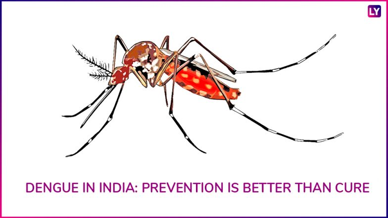 Dengue Fever: Expert Tips To Stay Protected From The Vector-Borne Disease This Monsoon