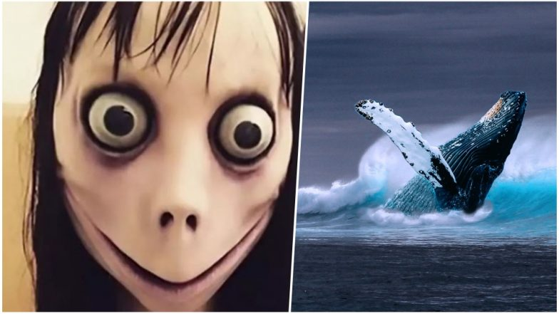 Momo Suicide Challenge on Whatsapp: What Parents Can Learn From The Blue Whale Challenge And Keep Their Children Safe