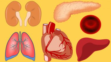 Uttar Pradesh to Soon Get Organ Tissue Transplant Organisation