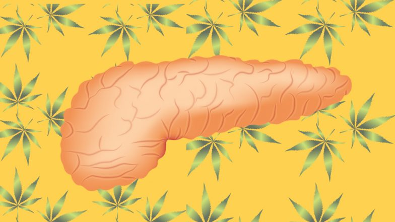 Weed To Treat Cancer? Cannabis Compound May Increase Lifespan in Patients Suffering Pancreatic Cancer
