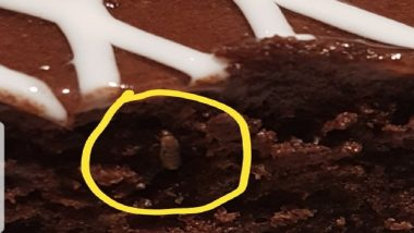 Hyderabad's IKEA Store In Trouble Again! Insect Found In Chocolate Cake; GHMC Imposes Fine Of Rs 5,000