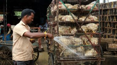 Delhi High Court Bans Slaughter of Poultry in Ghazipur Murga Mandi