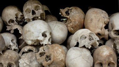 Mexico: 166 Human Skulls Found From 3,200 sq ft Mass Grave in Veracruz
