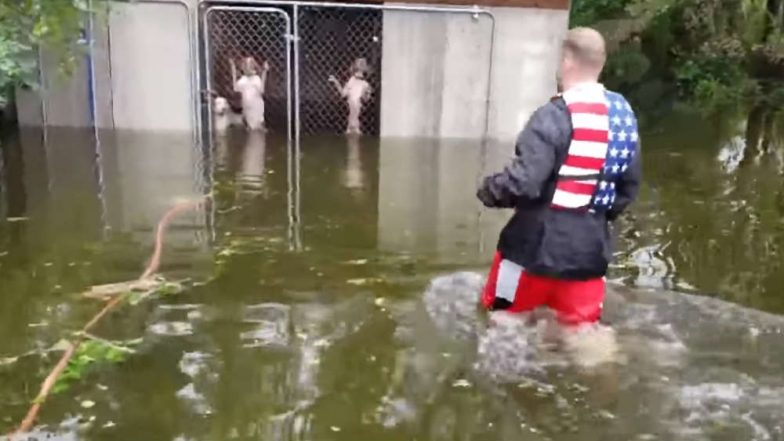 Hurricane Florence: Six Dogs Abandoned by Owners in Flooded Kennel Rescued From North Carolina(Watch Video)