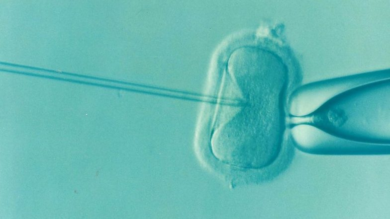 IVF Can Compromise Your Baby's Health: 9 Dangers of In Vitro Fertilisation You Should Know About