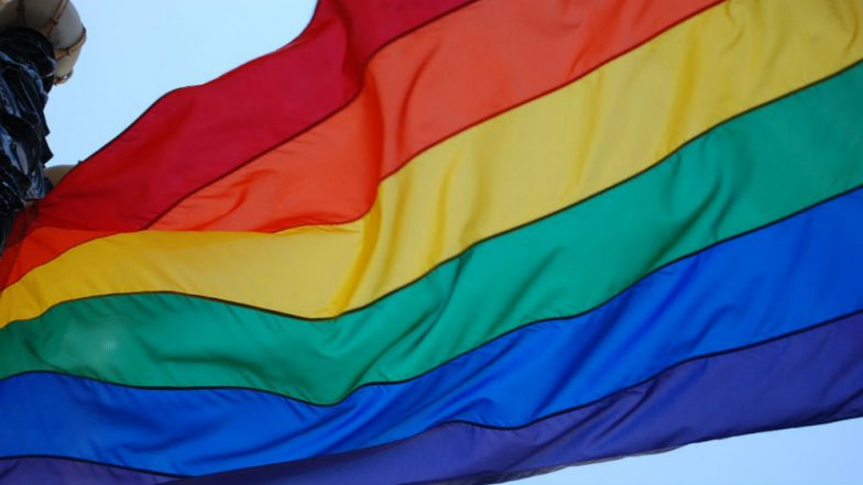 Dutch Tourist, Reportedly Mistaken For Being Gay, Thrashed by Locals in Lucknow For Using Rainbow Coloured Payment Card