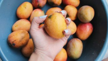 Australian Needle Crisis Continues, After Strawberries and Apples, Needle Now Found in Mango