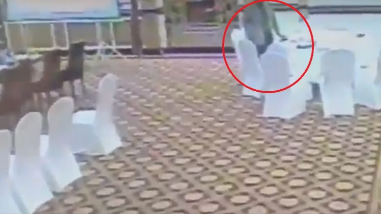 Pakistan Bureaucrat Caught on Camera Stealing Wallet of Kuwaiti Delegate, Watch Video