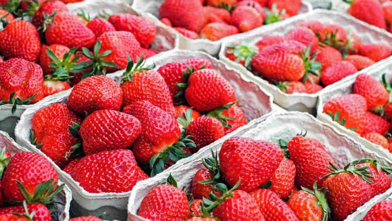 Strawberry Needle Scare in Australia: NSW Boy Arrested for Causing Scare and Crippling the Fruit Industry