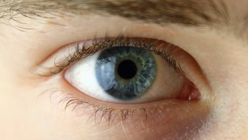 Mojo Vision: 'Invisible Computing' Startup Unveils AR Contact Lens Which Offers Display