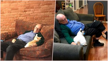 Cat Grandpa Goes Viral! Internet Is in Love With Safe Haven's Elderly Volunteer Napping With Felines; View Adorable Pics