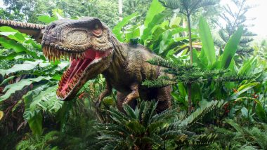 Footprints from 6 Different Dinosaur Species Discovered in UK's Kent