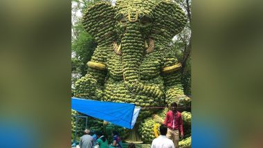 Banana Ganpati Pics Goes Viral on WhatsApp & Social Media: Is This Green Ganesha Really From Goa?