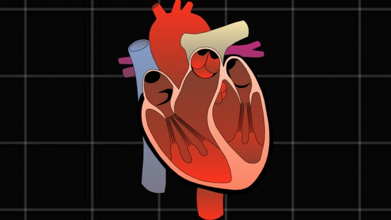 World Heart Day 2018: Why Are Indians in Their 20s and 30s Suffering From Cardiac Disorders?