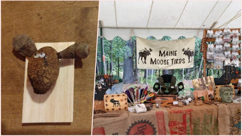 Artwork Made of Moose Poop! Excellent Excrement Art by Maine Woman Goes Viral, View Pics