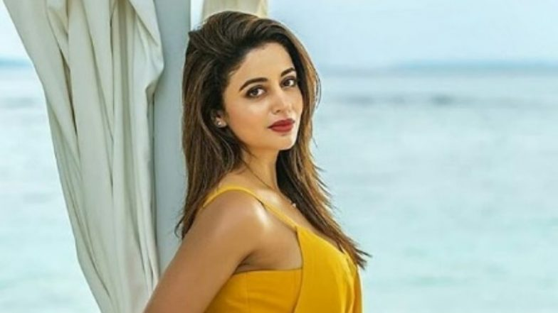 Bigg Boss 12 Contestant Neha Pendse on Getting Into Fights in the House, ' I Am Very Moody'
