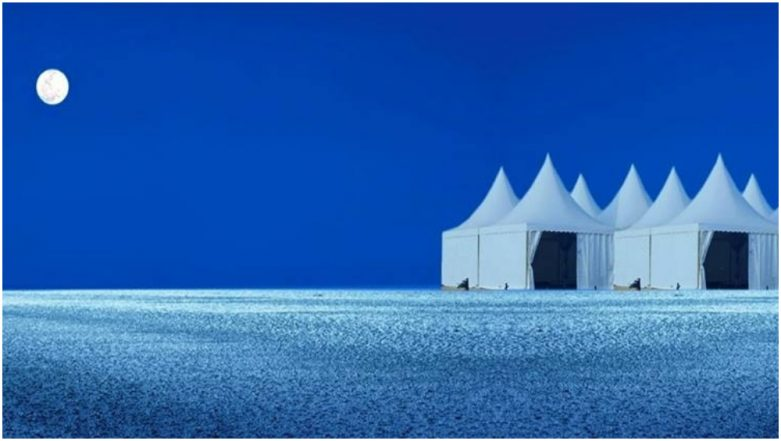 Rann Utsav 2018 Date & Bookings: Know Everything About The White Desert Carnival at The Tent City of Gujarat