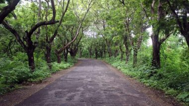 'Save Aarey' Setback: Bombay High Court Dismisses All Petitions Challenging BMC Decision Allowing Felling of Over 2,700 Trees For Metro Car Shade
