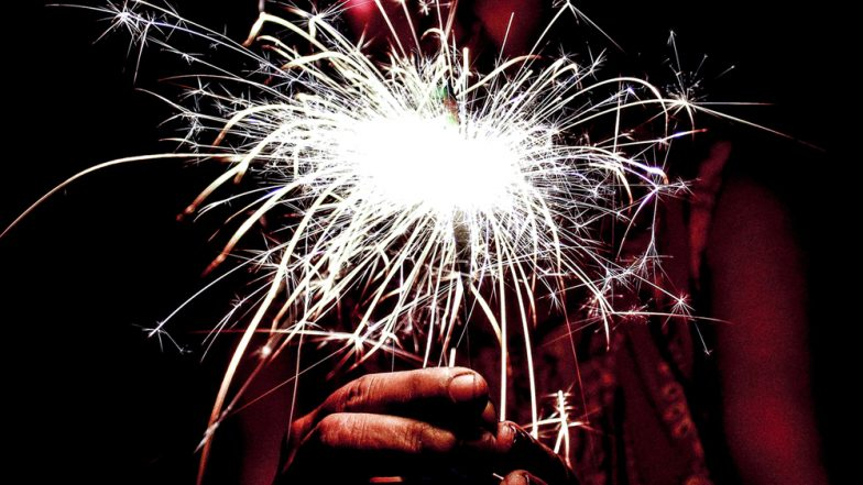 Firecrackers Ban: Why Keep Stressing on Banning Crackers When Automobile Is Bigger Pollutant, Asks Supreme Court