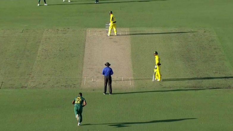 George Bailey's Funny Batting Stance Has Caught Everyone's Attention, Watch Video