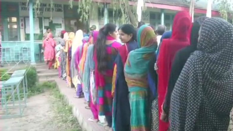 Jammu & Kashmir Local Body Elections: Rajouri Records Highest Voter Turnout, No Enthusiasm in Valley