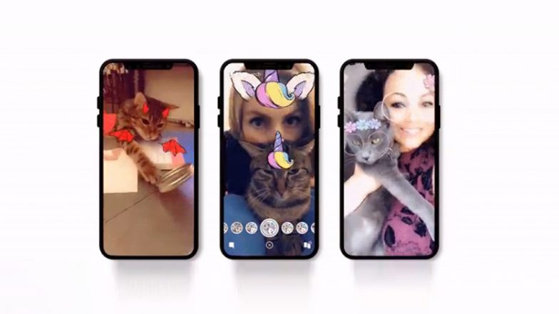 Snapchat Adds Cat Lenses! Now Your Feline Buddy Too Can Wear Fancy Glasses or Toast Hat