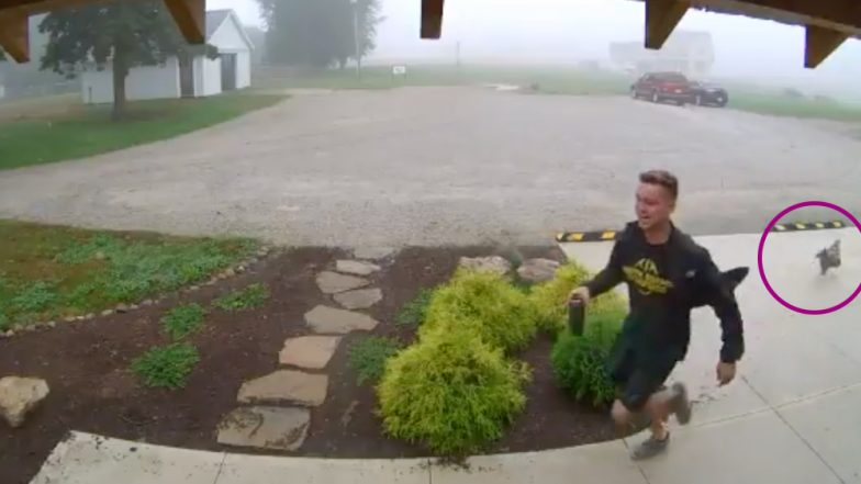 Guy Gets Chased By Chicken At Work At Indiana University, Watch Hilarious Viral Video