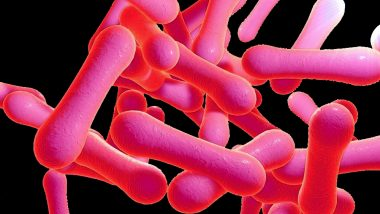Diphtheria Kills 7 in Karnataka's Kalaburagi District, State Govt Launches Awareness Campaign